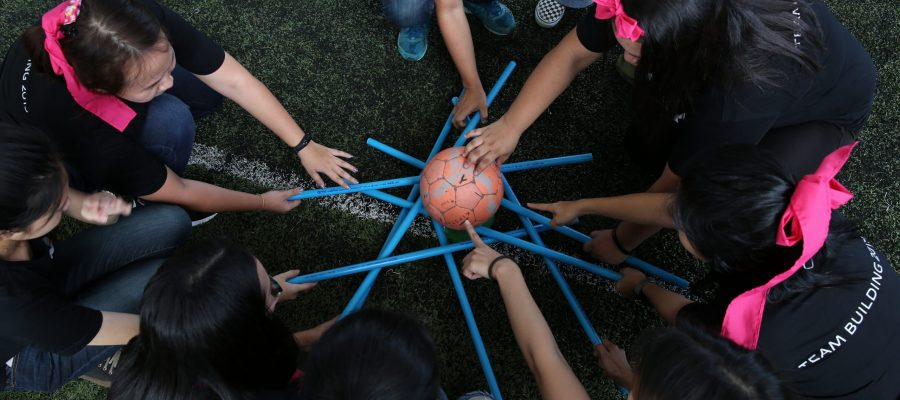 Team Cohesion Activities for your team building